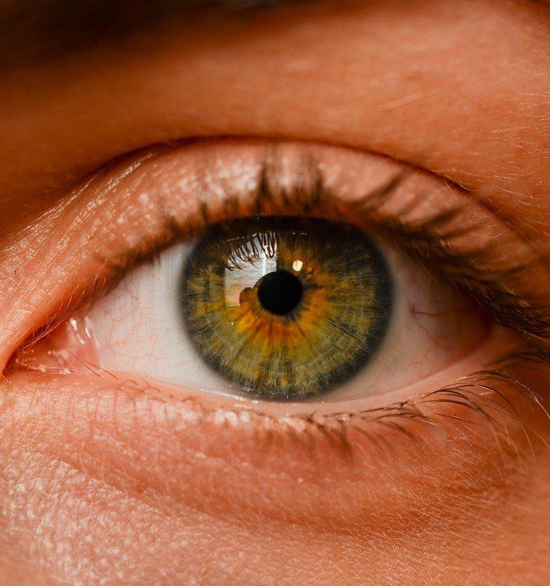 Oczy to wyrafinowany narząd. To właśnie dzięki nim odczuwamy.